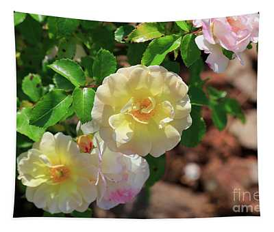 Popcorn Drift Rose Tapestry