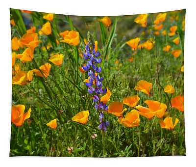 Poppies And Lupine Tapestry