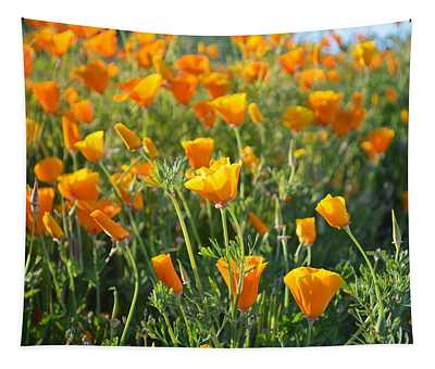 Poppies Blooming Tapestry