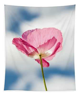 Poppy In The Clouds Tapestry