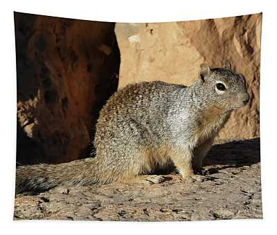 Posing Squirrel Tapestry