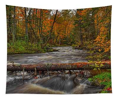 Prairie River Tree Crossing Tapestry