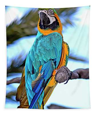 Pretty Parrot Tapestry