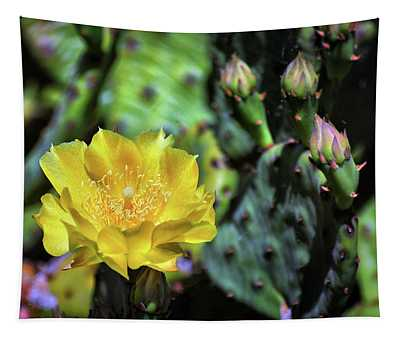 Prickly Pear Cactus Flower On Assateague Island Tapestry