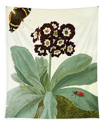 Primula Auricula With Butterfly And Beetle Tapestry