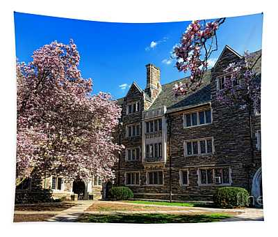 Princeton University Pyne Hall Courtyard Tapestry