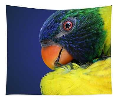 Profile Of A Lorikeet Tapestry