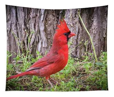Proud Cardinal Tapestry