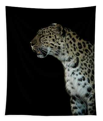 Prowl Tapestry