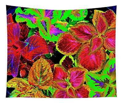 Psychedelic Coleus - 38 Tapestry