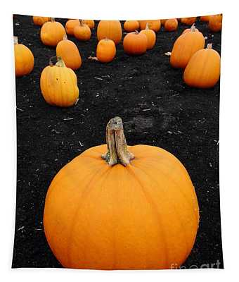 Pumpkin Patch 5 Tapestry