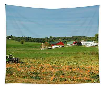 Pumpkins On An Ohio Amish Farm Tapestry