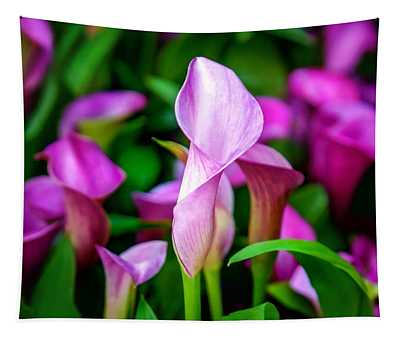 Purple Calla Lilies Tapestry