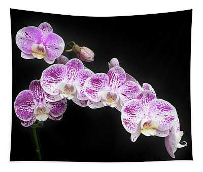 Purple On White On Black Tapestry