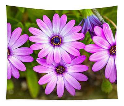 Purple Pals Tapestry