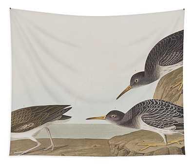 Purple Sandpiper Tapestry