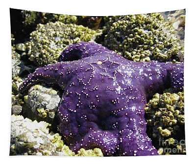 Purple Star Fish Tapestry