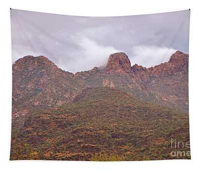 Pusch Ridge Tucson Arizona Tapestry