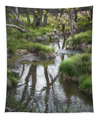 Quiet Stream Tapestry