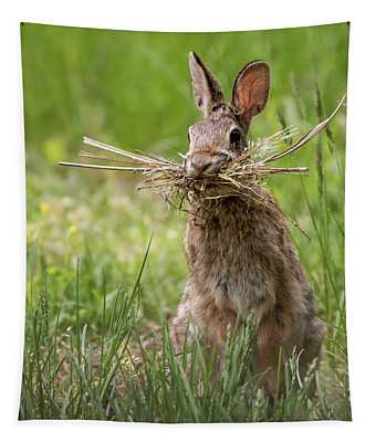 Rabbit Collector Square Tapestry