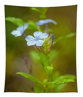 Raindrops On Petals Tapestry