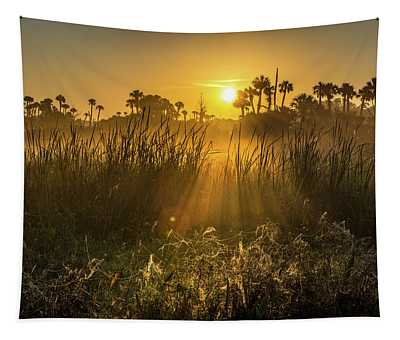 Rays Of Light Tapestry