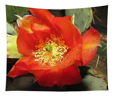 Red Bloom 1 - Prickly Pear Cactus Tapestry