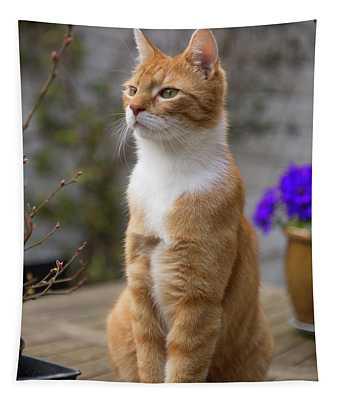 Red Cat Alert Tapestry