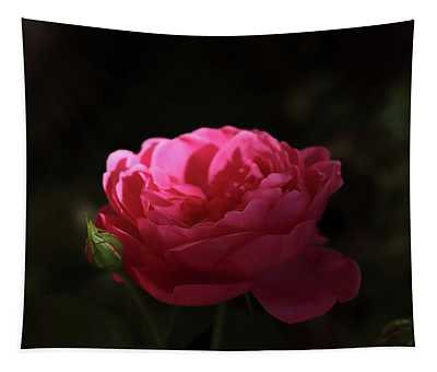 Red Evening Rose Tapestry