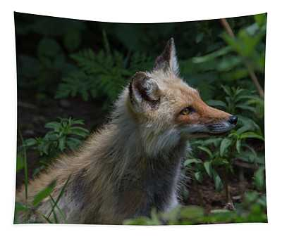 Red Fox In The Forest Tapestry