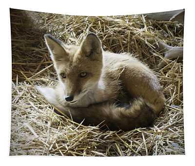 Red Fox Tapestry