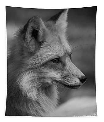 Red Fox Portrait In Black And White Tapestry