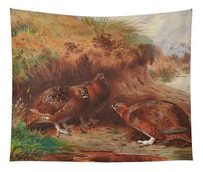 Red Grouse Beneath A Burn Bank Tapestry
