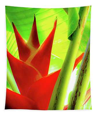 Red Heliconia Plant Tapestry