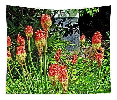 Red Hot Pokers At Pelican Inn Near Muir Beach In Muir Woods National Monument, California Tapestry