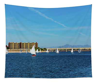 Red Sailboat In The Desert Tapestry