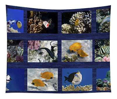Red Sea Sealife Collage Tapestry