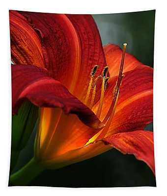 Red Seduction 2 Tapestry