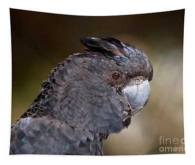 Red-tailed Black Cockatoo Tapestry