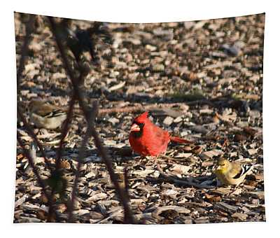 Redbird And American Golden Finch Tapestry