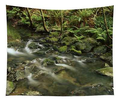 Redwood Creek Tapestry