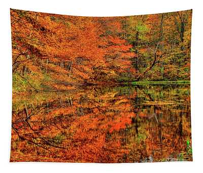 Reflection Of Autumn Tapestry