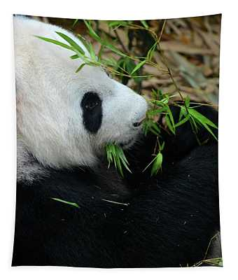 Relaxed Panda Bear Eats With Green Leaves In Mouth Tapestry
