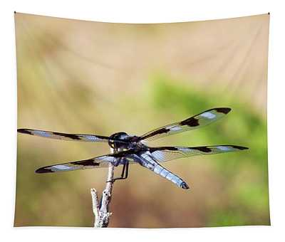 Tapestry featuring the photograph Rest Area, Dragonfly On A Branch by Shelli Fitzpatrick