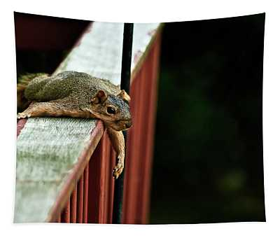 Resting Squirrel Tapestry