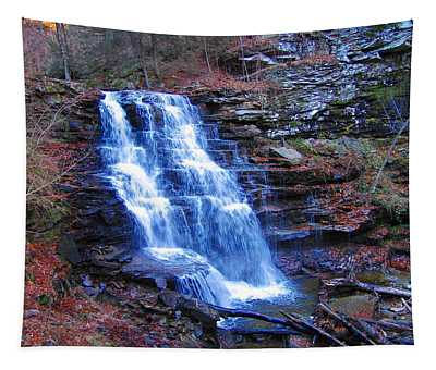 Ricketts Glen Waterfall 3941  Tapestry