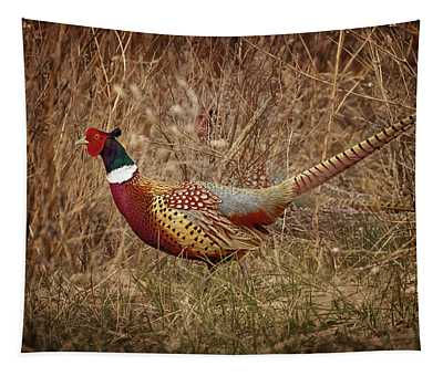 Ring Necked Pheasant Tapestry