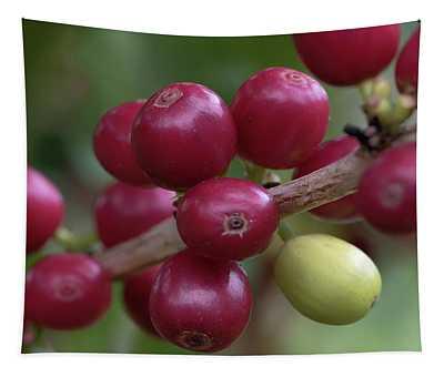 Ripe Kona Coffee Cherries Tapestry