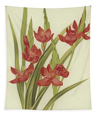 River Lily Or Crimson Flag Tapestry