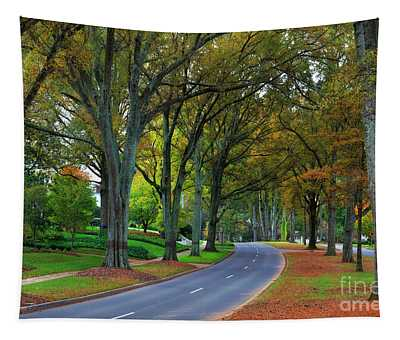 Road In Charlotte Tapestry